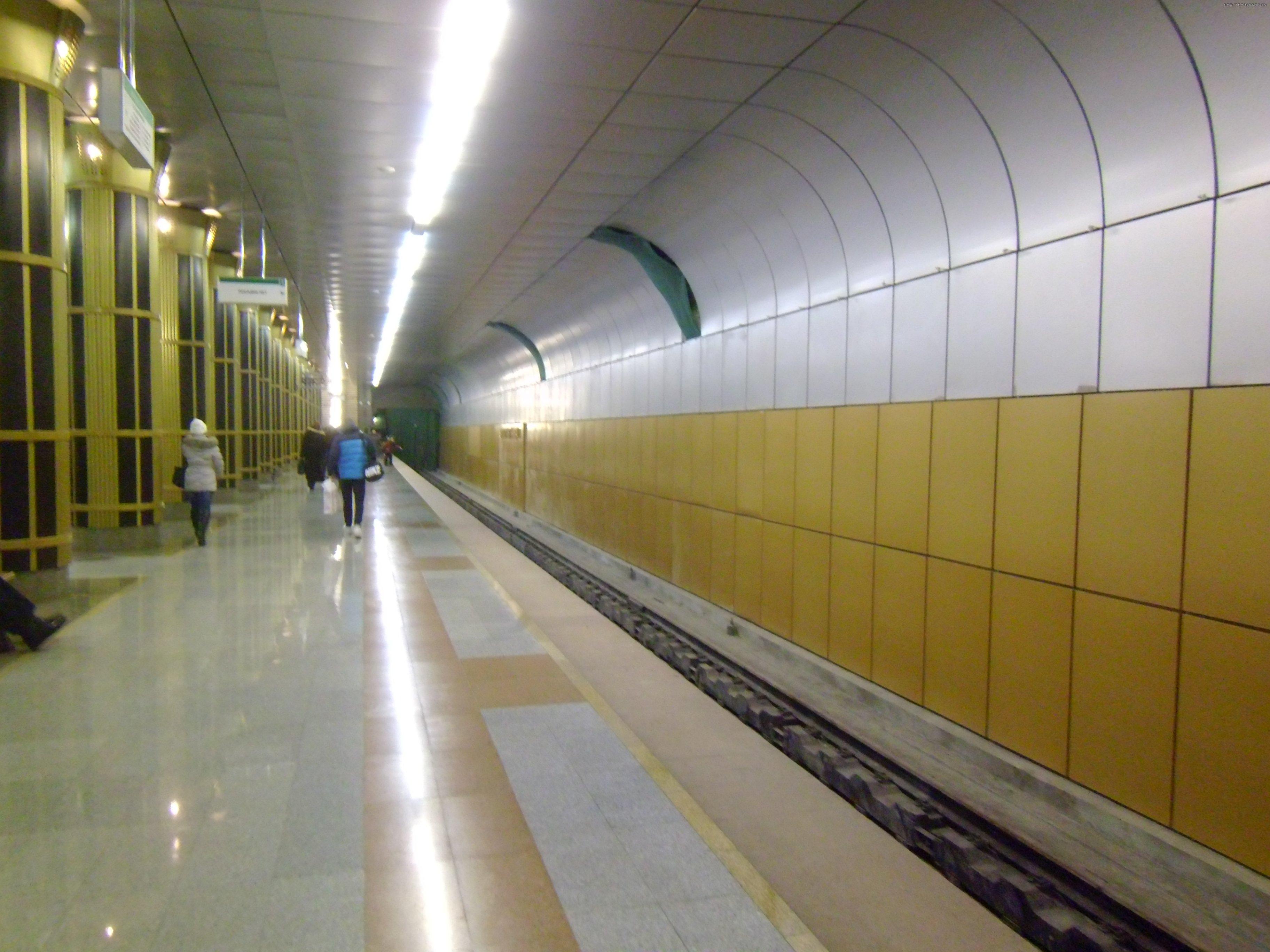 prostitutki-metro-zolotaya-niva